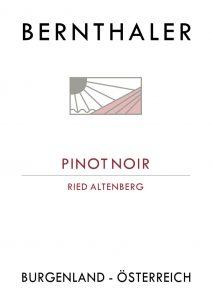 Bernthaler Bio Wein - Pinot Noir - Ried Altenberg